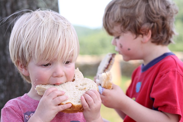 Know the major sources of sodium in children