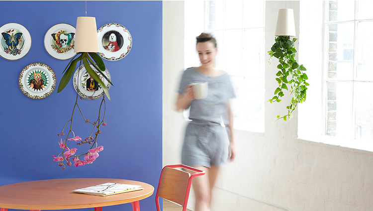 Goodbye to the bare walls 5 ideas to fill them with life